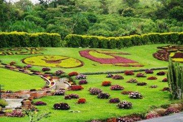 Bahçe Peyzajı, Aksesuar ve Mobilya | Masko Outlet | Masko